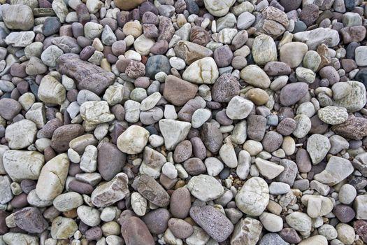 many stones laying around at beach. closeup shot.