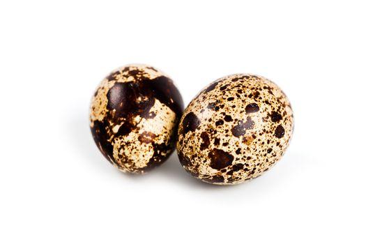 two quail eggs