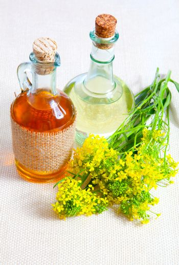 bottle of oil with rapeseed flower, on a canvas background