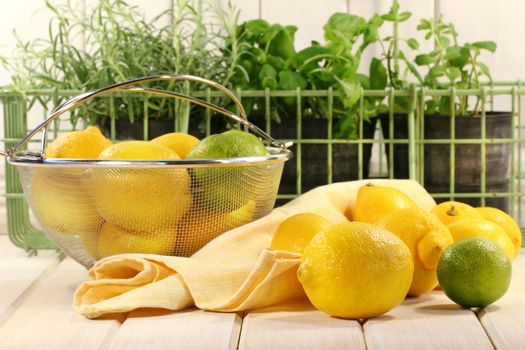 Lemons and herbs on kitchen counter surface