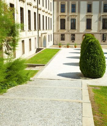 square  of the city with green bushes