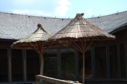 Hawaiian hut