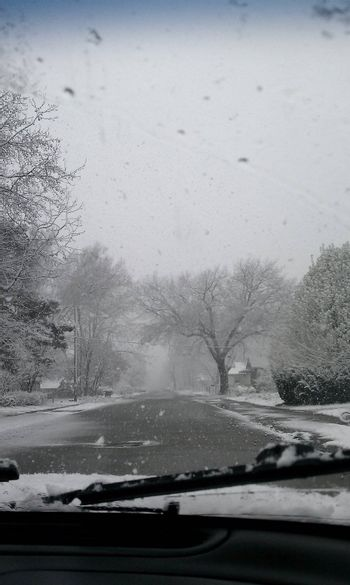 Crazy snow fall in the spring!