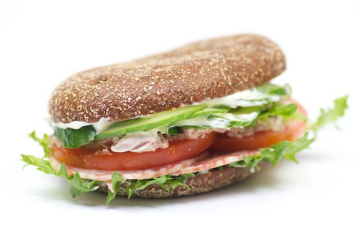 Whole wheat bread sandwich with salchichone and vegetables