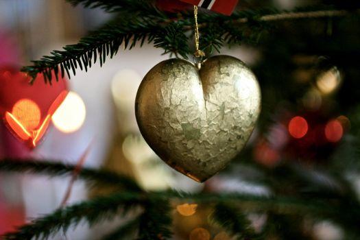 Decoration on a christmas tree