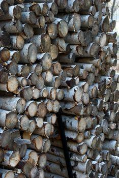 Mountain Firewood