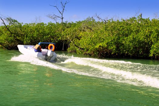 Boating in mangroves in Mayan Riviera Mexico