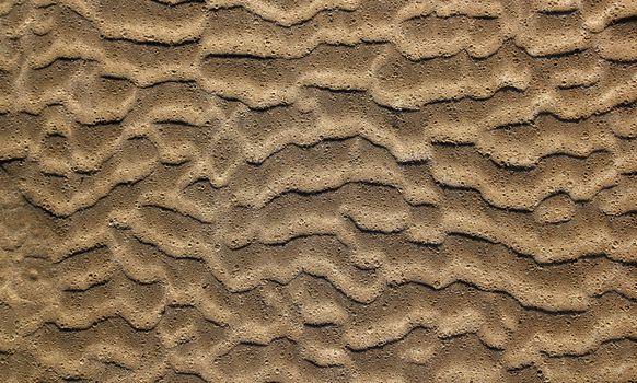 beach sand waves pattern texture brown wet