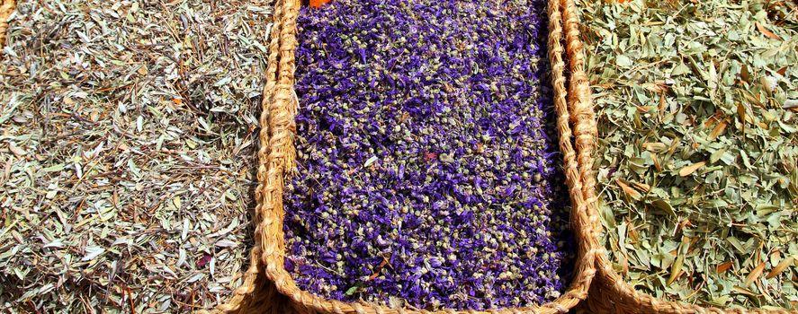 herbal natural medicine market traditional medicine
