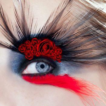 black bird woman eye makeup macro red rose spanish metaphor mothers day