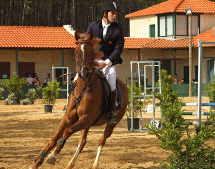Competition of horse jumping