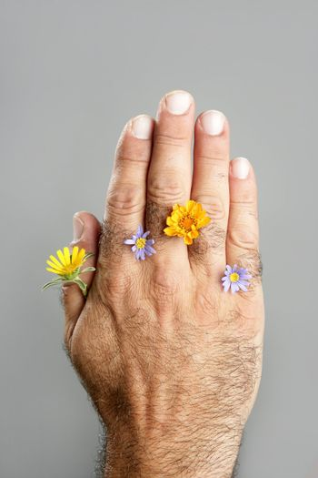 Concept and contrast of hairy man hand and flower