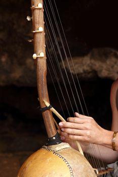 ethnic african ten strings instrument
