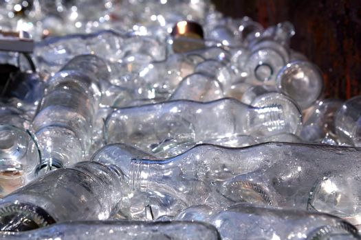 ecological recycling glass bottles in container