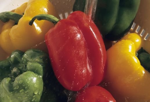 Sweet peppers being washed
