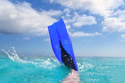 Diving blue fin splashing in Caribbean surface