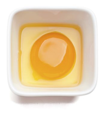 Egg yolk in square cup. Isolated on a white background.
