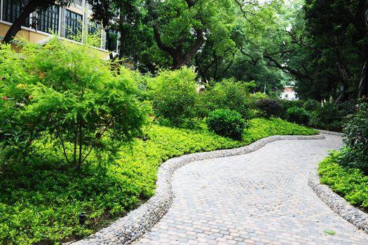 Road in the garden