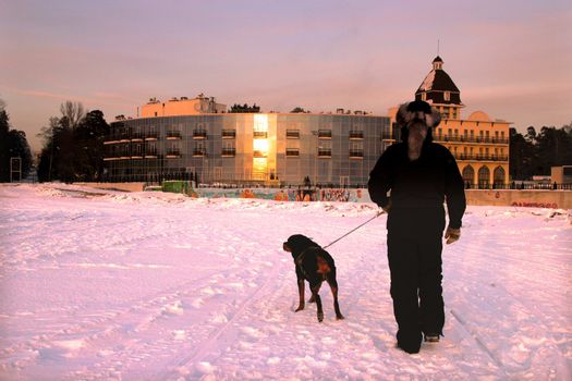 Men with rottweiler working near the glass house. Winter view