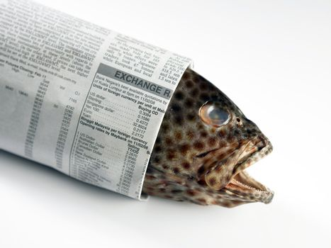 Fish Wrapped In Newspaper
