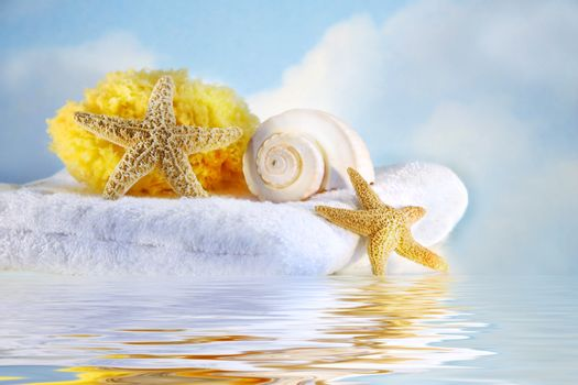 Sea shells and towel with water reflection
