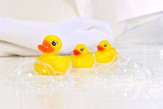 Three yellow rubber ducks on white bathroom tiles