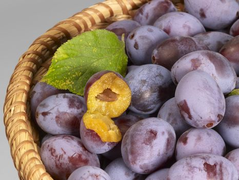 a basket with plums in grey back