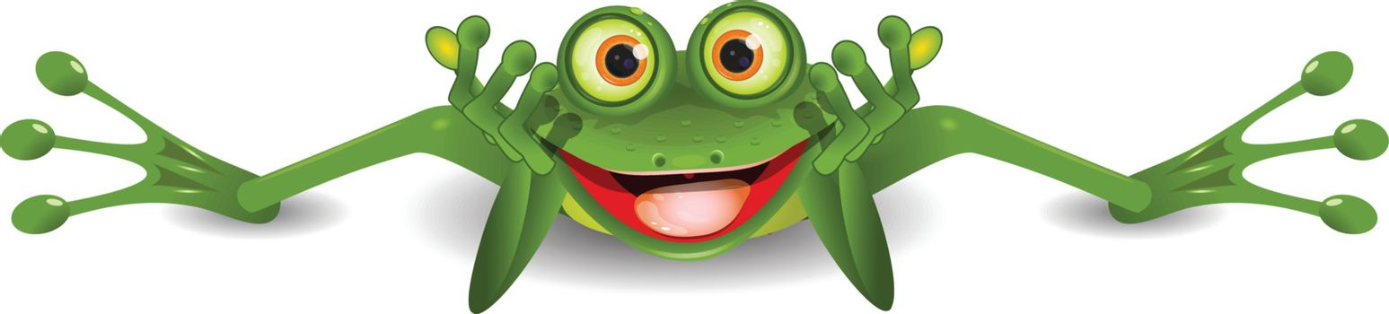 illustration funny green frog is on his stomach