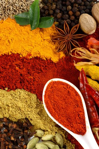 spice and flavoring ingredients arranged beautifully