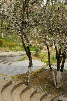 Tbilisi parks