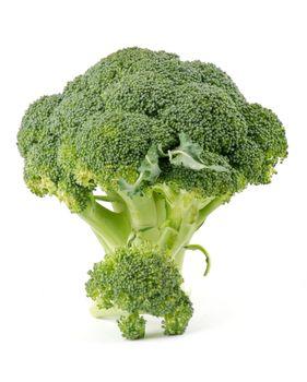 Two broccoli florets