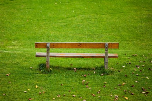 lone bench on green grass background