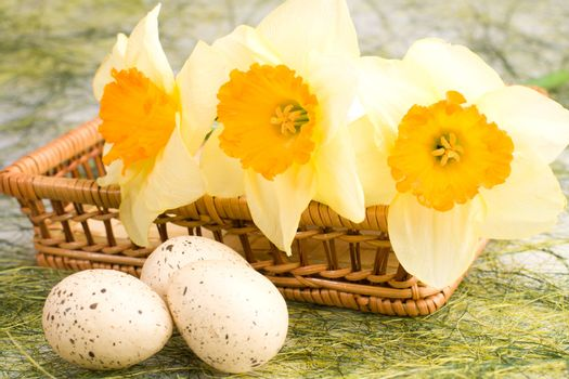 Decorated speckled easter eggs with a bunch of daffodils in the woven basket