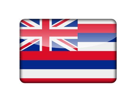 The Hawaii flag