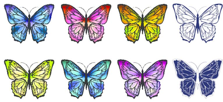 different multicolored butterfly collection over white background