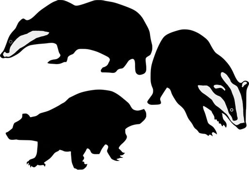set of the silhouettes of the badger