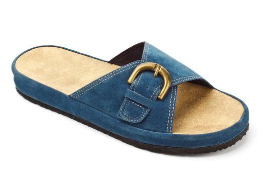blue slipper