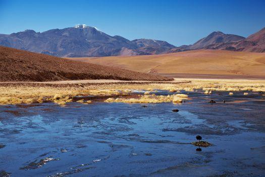 Rio Putana and volcanoes in Atacama region, Chile