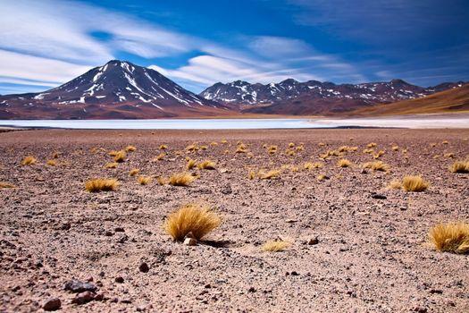 altiplano lagoon Miscanti close to cerro Miscanti, Chile