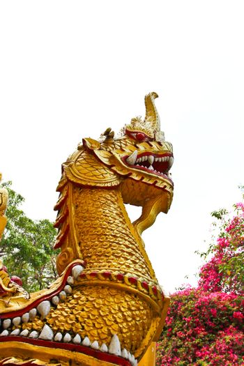 statue king of nagas in front of buddhism temple, Thailand