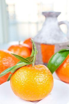 Tangerine on pitcher background