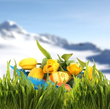 Easter basket with colored eggs and yellow tulips in spring mountains