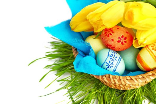 Colorful easter eggs in basket and tulips isolated on white