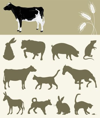 Collection of animals of a farm. A vector illustration
