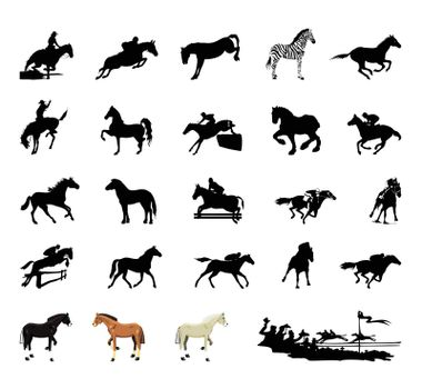 Black silhouettes of horses on a white background. A vector illustration
