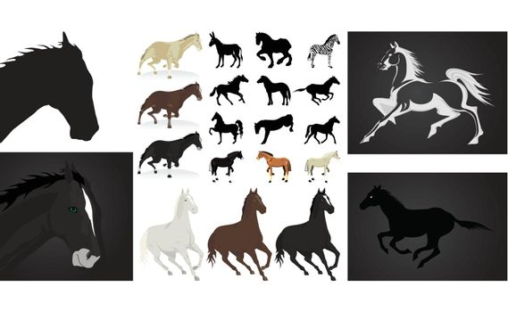 The big collection of horses. A vector illustration