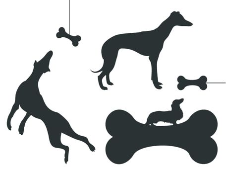 The dog chases a bone. A vector illustration