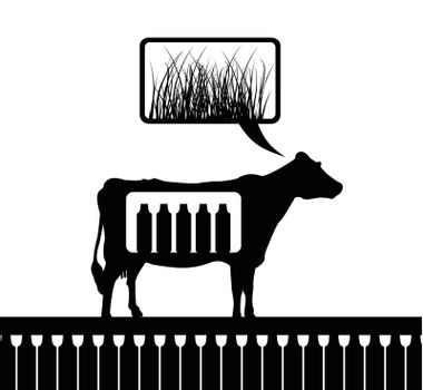 The cow thinks of a grass. A vector illustration