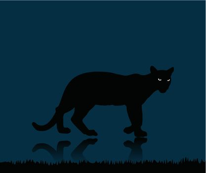 Wild animal with burning eyes in night darkness.