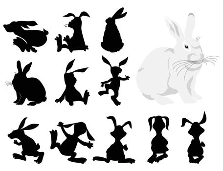 Black silhouettes of a rabbit in movement. A vector illustration
